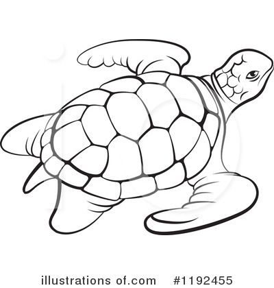 0f86d3ca464b05806c030e6714966acc Royalty Free Rf Sea Turtle Black And White Clipart Of A Sea Turtle 400 420 Jpeg 400 Turtle Drawing Turtle Outline Turtle Art