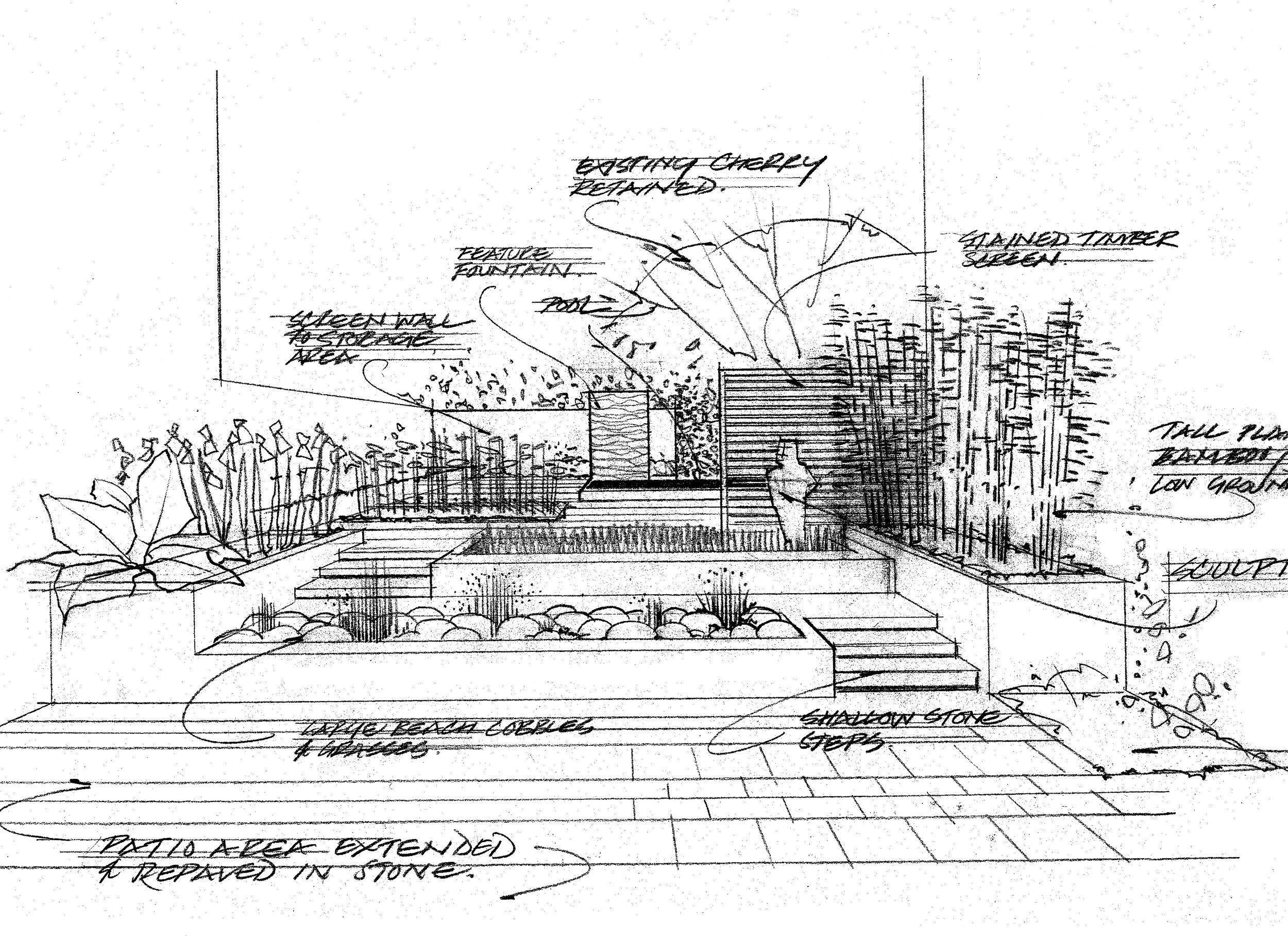 Vegetable Garden Sketch