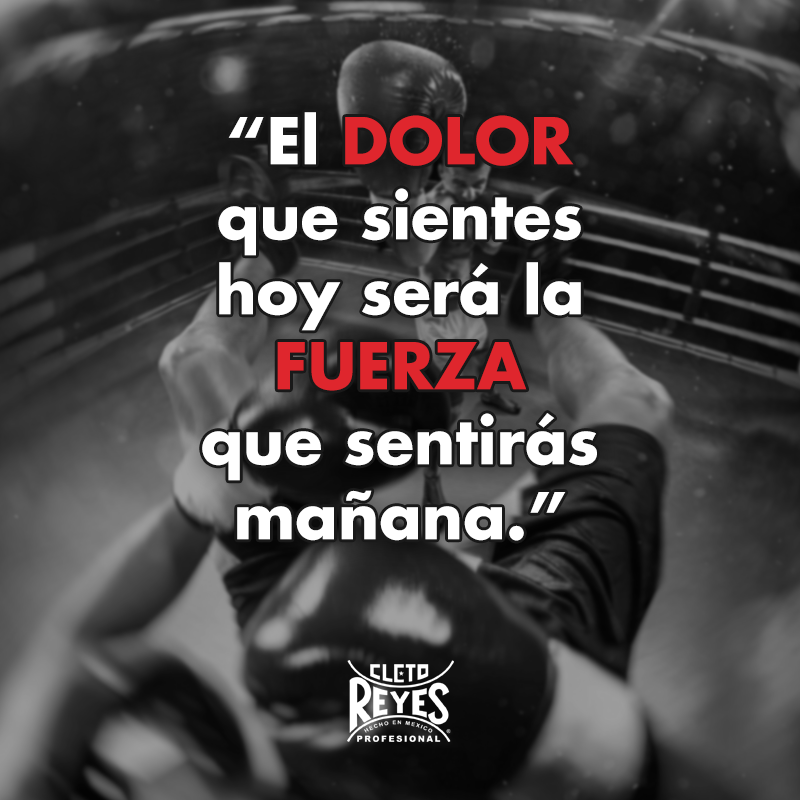 Frase Quote Motivation Cletoreyes Boxing Deporte