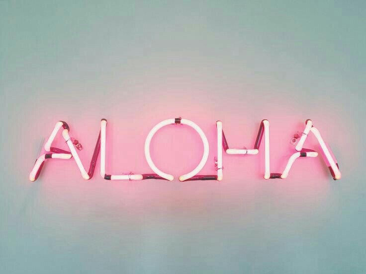 Pinterest Sophiebo14 Macbook Wallpaper Neon Signs