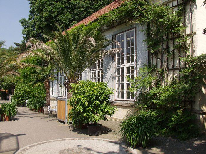 Botanischer Garten Münster Münster Pinterest