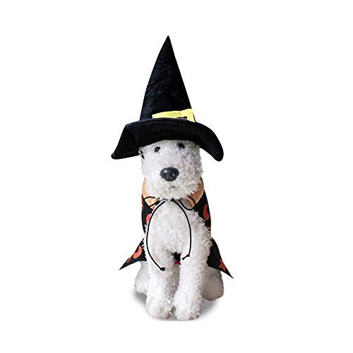 Bigface Up Pet Dog Halloween Wizard Cloak Costume with Hat Dog Party Clothes (Small) ** Click image to review more details.