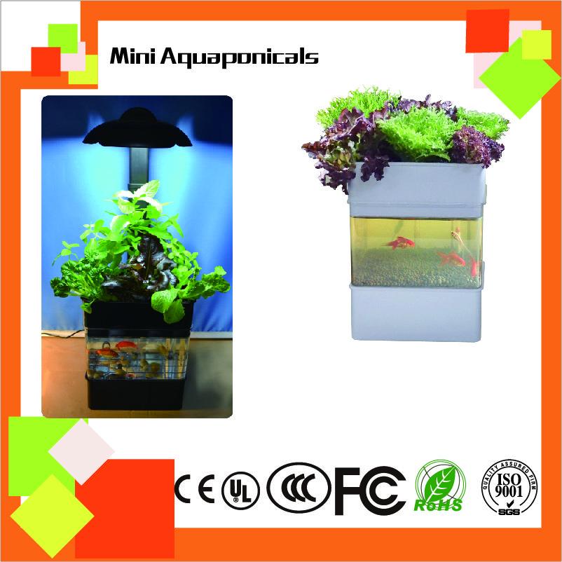 MIni Aquaponicals Hydroponics Aquaponics system for greenhouse/indoor planting system/garden decoration/