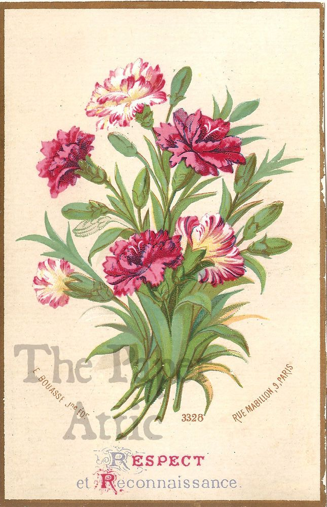 """Pretty Carnations Antique Victorian French """"Respect & Recognition"""" Chromo Card"""
