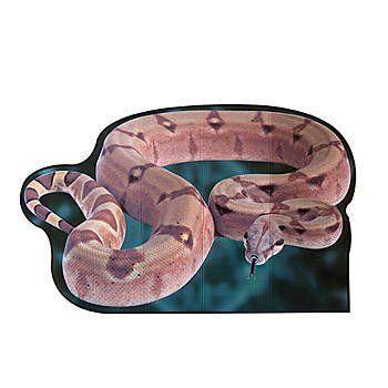 Giant Snake Standee Shindigz http://www.amazon.com/dp/B00BL4W7L4/ref=cm_sw_r_pi_dp_pR0Ntb0CWEJ8GH7Q