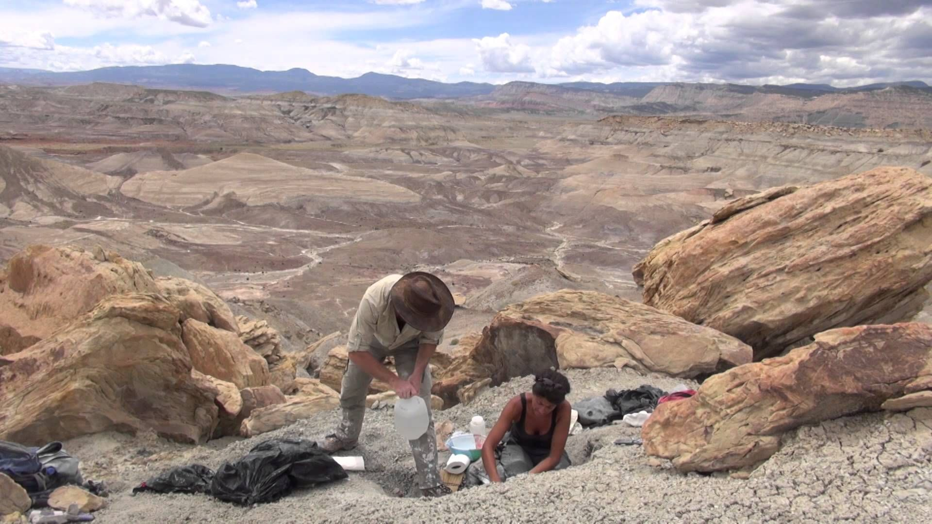 Paleontology 101 The Utah Expedition