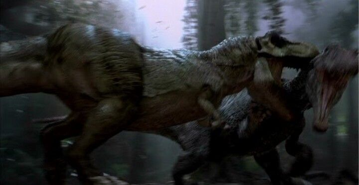 Rex Should Never Have Lost This