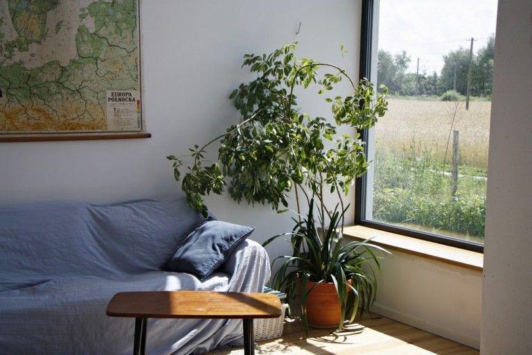 Mg 1584 Home Decor Home Decor