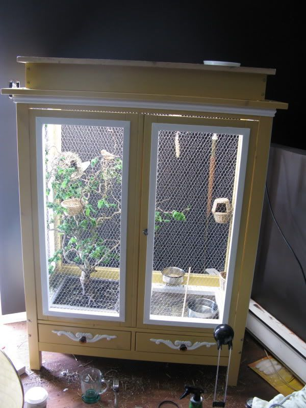 Clever! >> methods to construct an indoor chook aviary