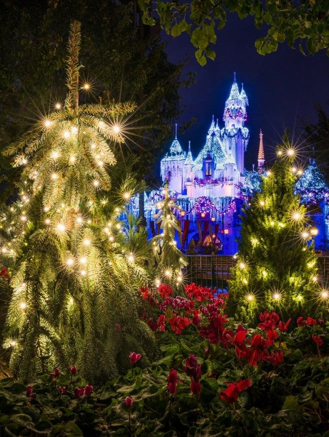 30 awesome disneyland christmas decorations