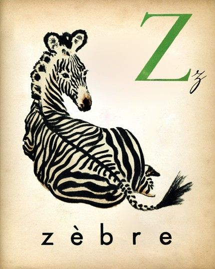 This One Reminds Me Of Kathy Leverton One Day I Ll Visit South Africa French Alphabet Zebras Alphabet Print