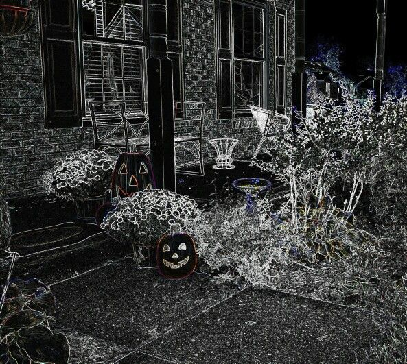 Pumpkin's in the night.