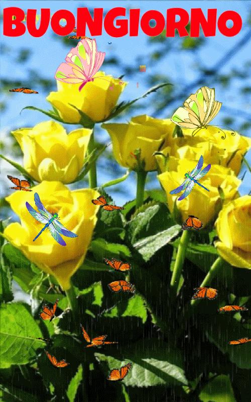 Buongiorno fiori per te