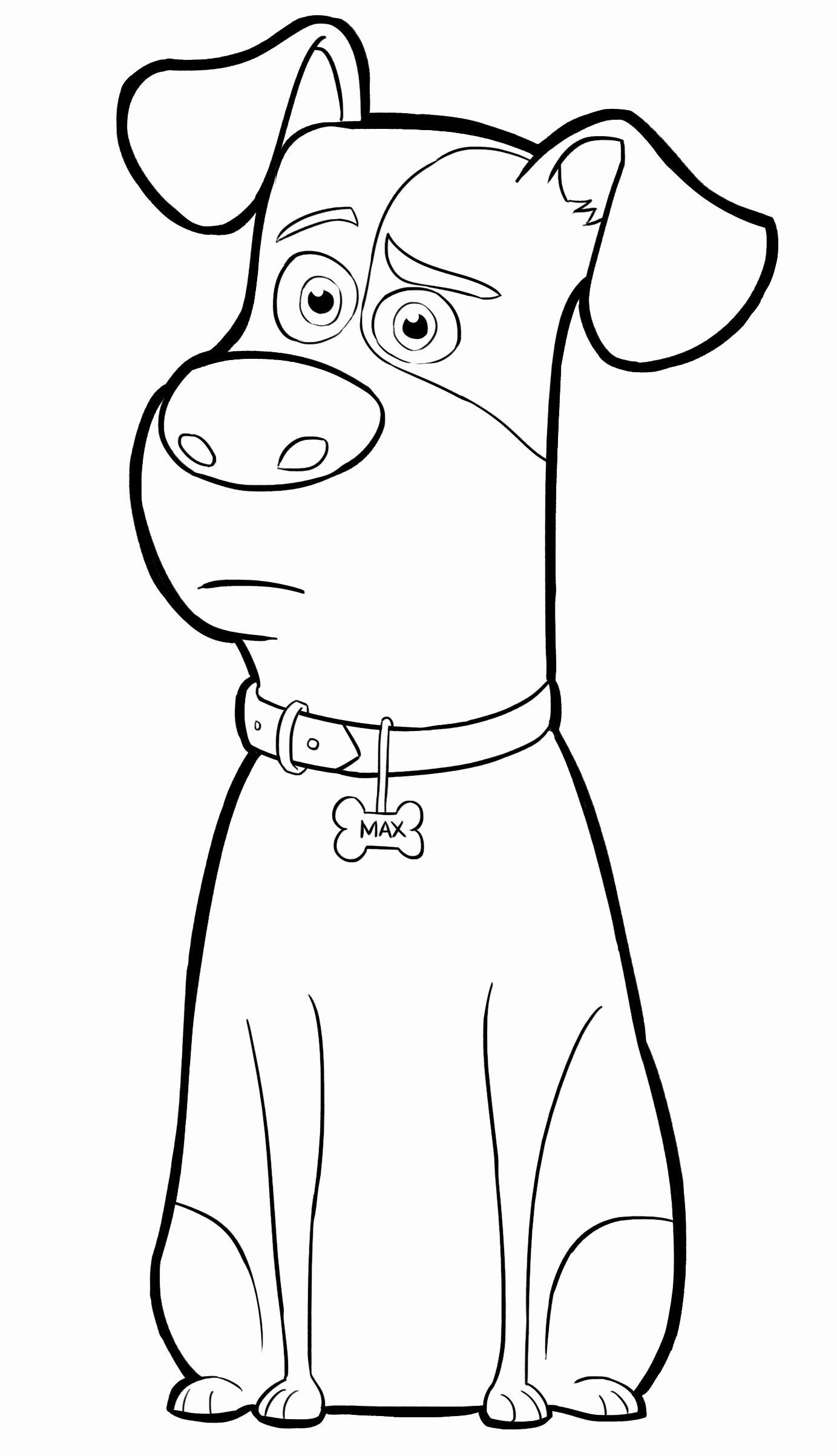 Drawing Book For Kids 20 Pages In 2020 Puppy Coloring Pages Secret Life Of Pets Dog Coloring Page