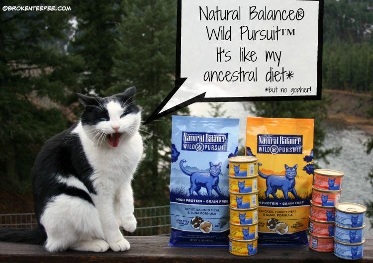 Natural Pet Food From Natural Balance At Petsmart Naturalbalance