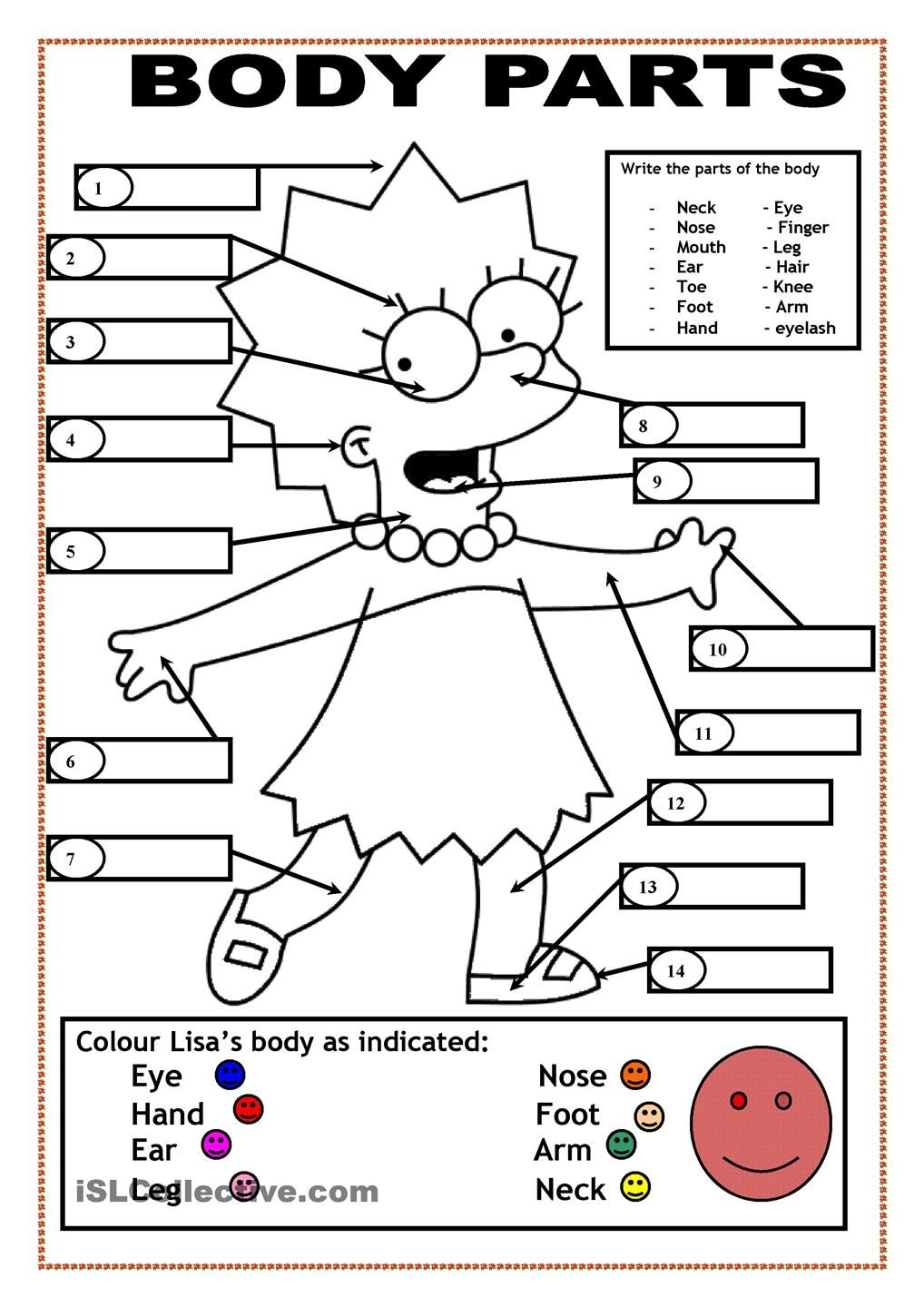 worksheet Spanish Worksheets Body Parts body parts coloring pages english pinterest bodies adapt to spanish
