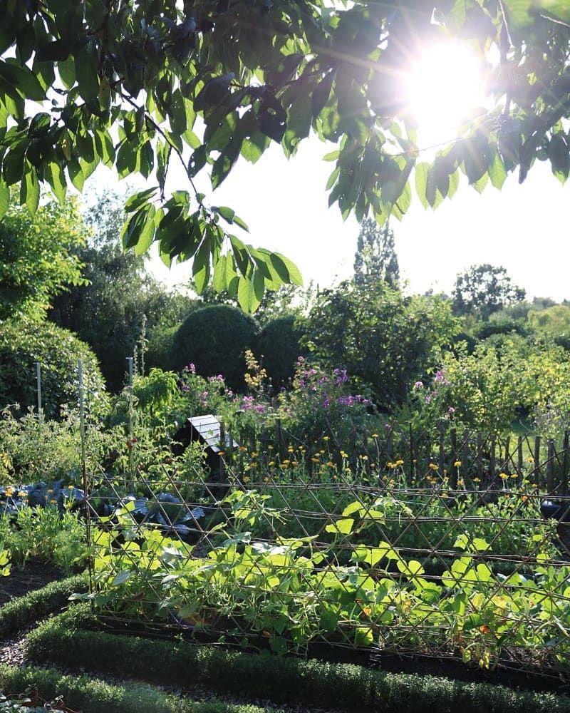 Ein Bisschen Sonne Im Garten Getankt Outdoor Water River