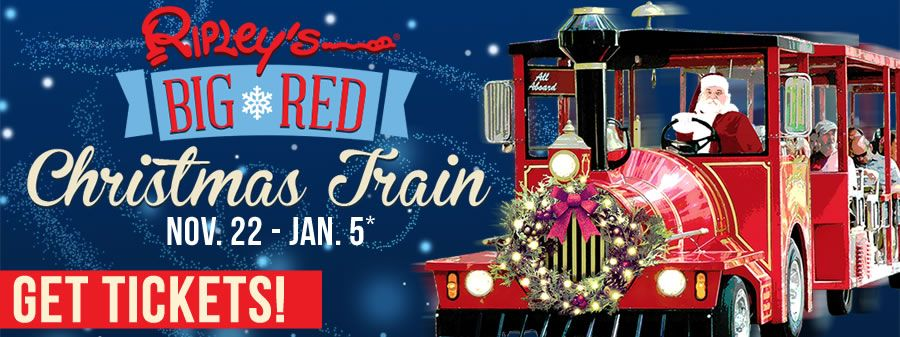 St. Augustine Nights of Lights - Ripley's Red Train Trolley Tours in 2020 | Lights tour, Holiday ...