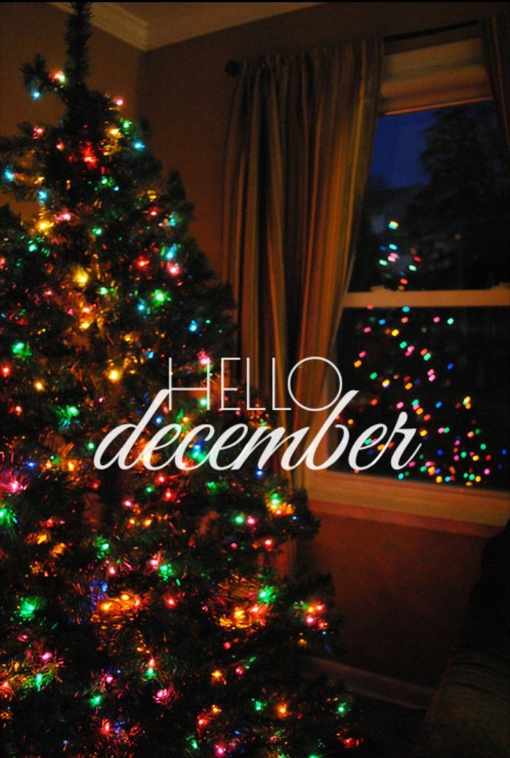 hello December #hellodecemberwallpaper #december #hellodecember #welcomedecember #christmas #wallpaper #background #decemberwallpaper #decemberiphonewallpaper #iphone #iphonewallpaper #lockscreen #christmaslockscreen #decemberlockscreen #christmasbackground #tistheseason #goodbyenovember #hellodecemberwallpaper