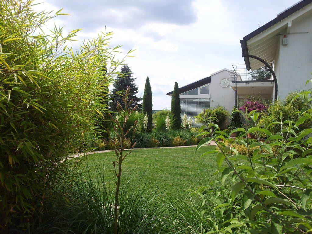 Moderner Pflegeleichter Garten   Kombination Von Gräsern Und Immegrünen  Elementen (von Planungsbüro STEFAN LAPORT)