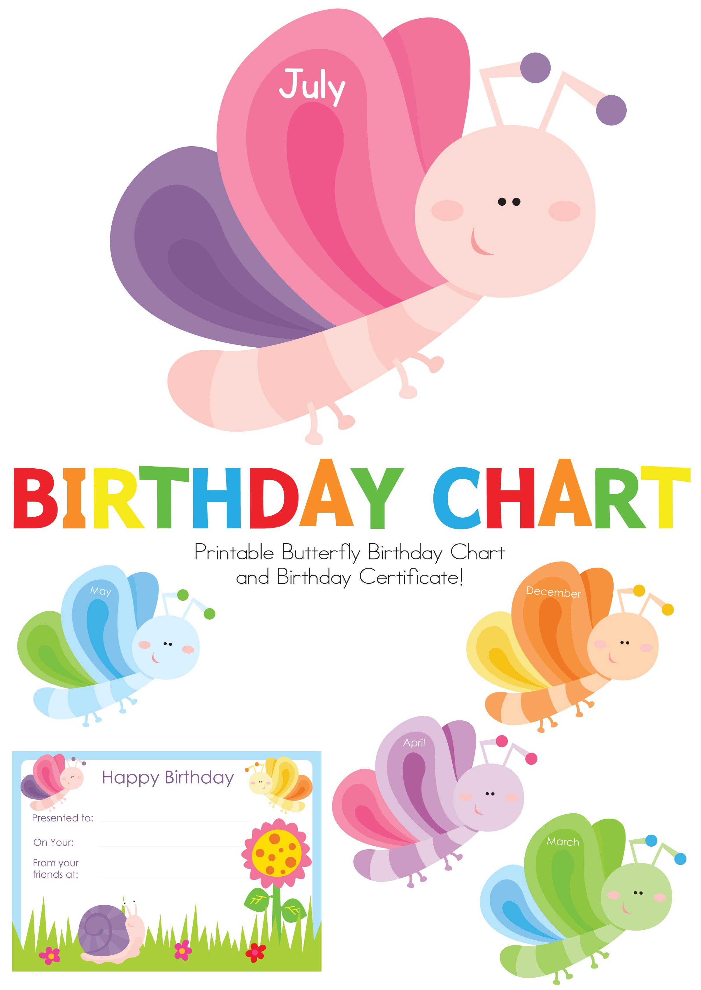 Butterfly Birthday Chart Com Imagens Aniversario Festa