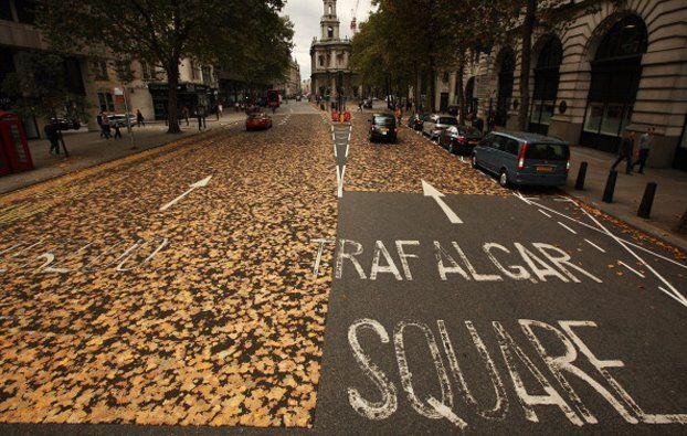 A Londra le alte temperature hanno incollato un tappeto di foglie sull'asfalto. (Peter Macdiarmid, Getty Images)