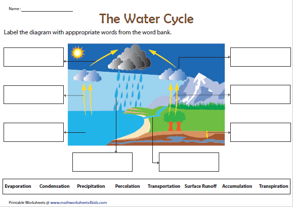 label the water cycle diagram | water cycle, water cycle activities, water  cycle worksheet  pinterest