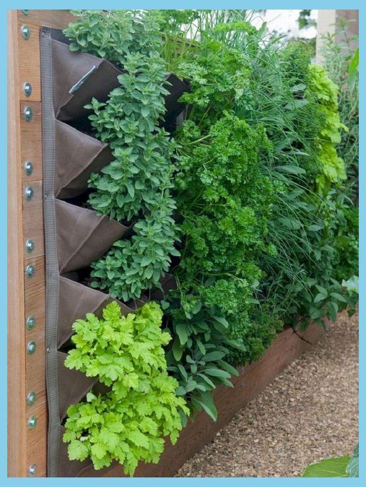 Photo of 50 Best Cheap and Easy DIY Wall Gardens Outdoor Inspirations   Vertical Herb Gar…