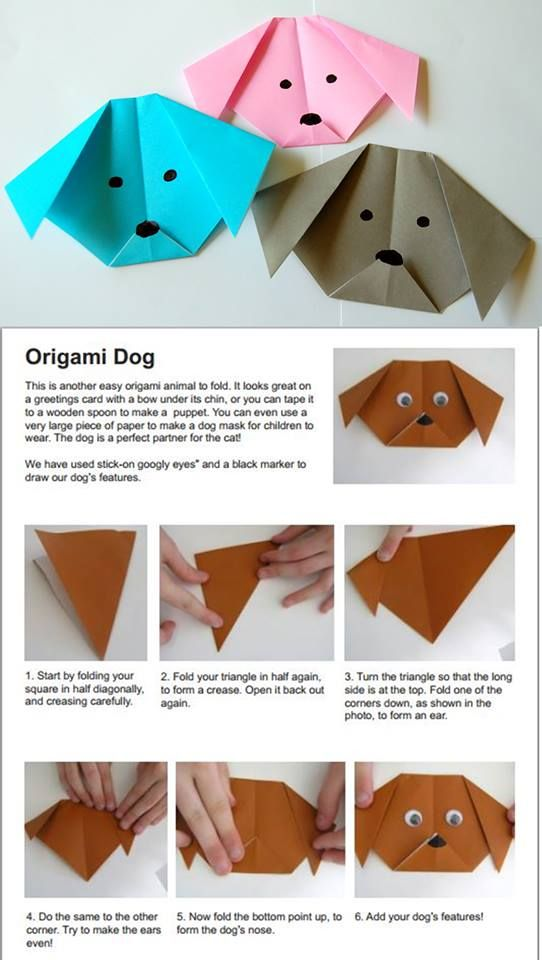 Origami Dog Crafts Pinterest Origami Chinese New Year Crafts