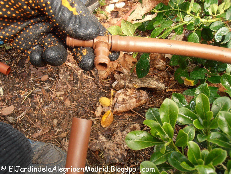 Blog de jardiner a cuidado cultivo rosales dise o for Instalacion riego jardin