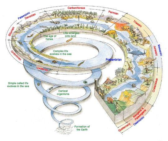 Timespiral Dinosaur Facts History Earth