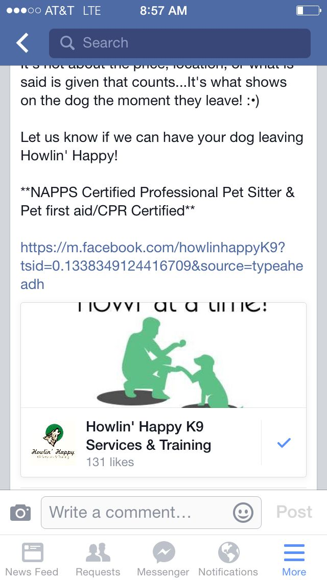 Support A Veteran Trying To Make A New Life Howlin Happy K9