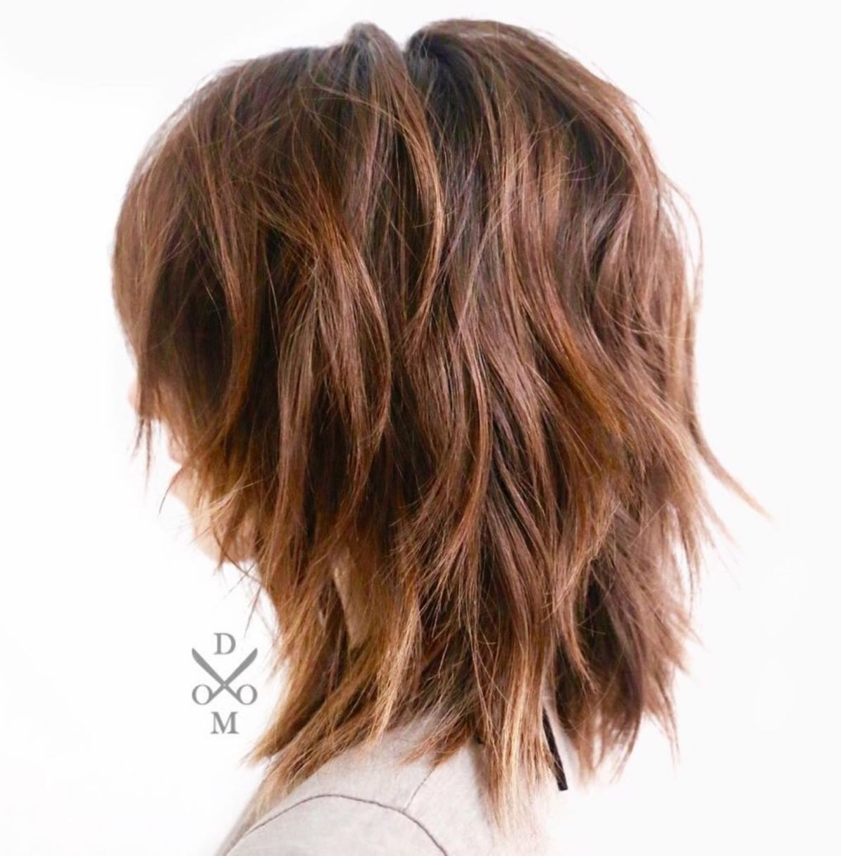 Medium Shaggy Layered Hairstyle For Thick Frizzy Hair Thick Hair Styles Haircut For Thick Hair Medium Length Hair With Layers