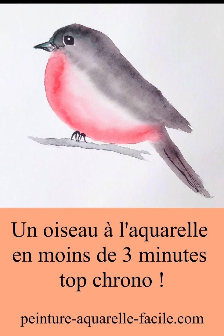 Comment peindre un oiseau à l'aquarelle très facilement et très rapidement. Niveau débutant. #aquarelle #peinture