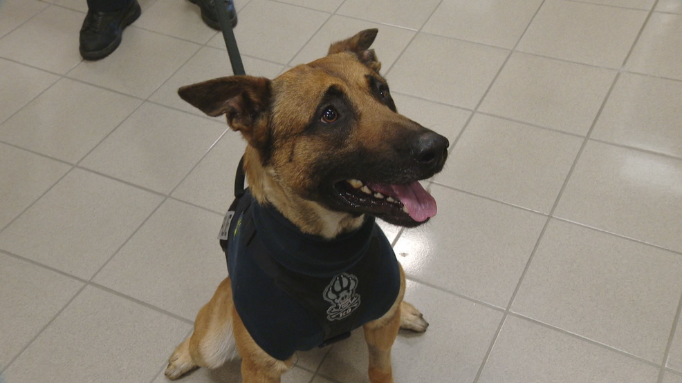 K9 Pyro Inducted Into Wisconsin Veterinary Medical Association Pet