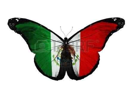 Bandera De Mexico Bandera Mexicana Mariposa Volando Aislado Sobre Fondo Blanco Bandera De Mexico Imagenes Simbolos Patrios De Mexico Arte Mexicano
