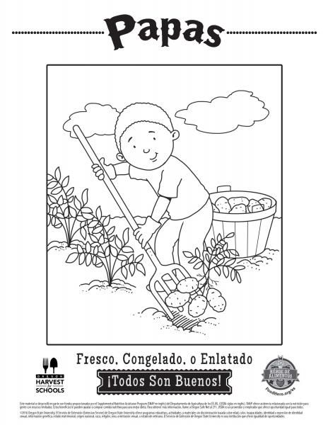 Coloring Pages Food Hero Healthy Coloring Sheets For Papas In Spanish Free Coloringpage Coloring Sheets Coloring Pages Childrens Colouring Sheets