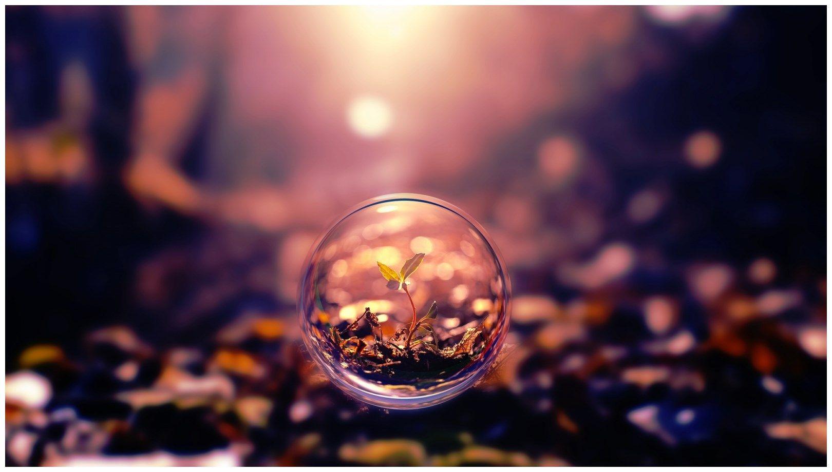 nature glass full hd