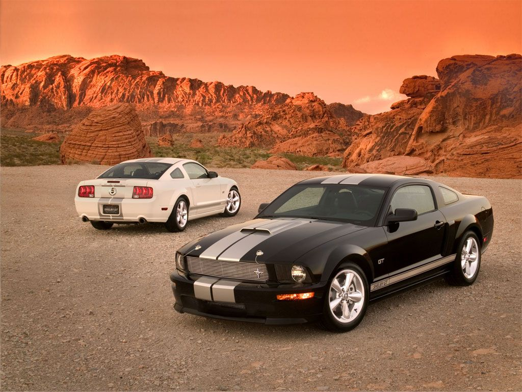Attractive Ford Mustang GT Black And Ford Shelby White #UsedEngines