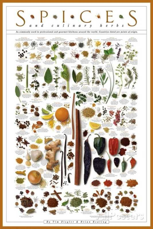 Summer Vegetables Posters At Allposters Com Culinary Herbs Herb Art Cooking Prints