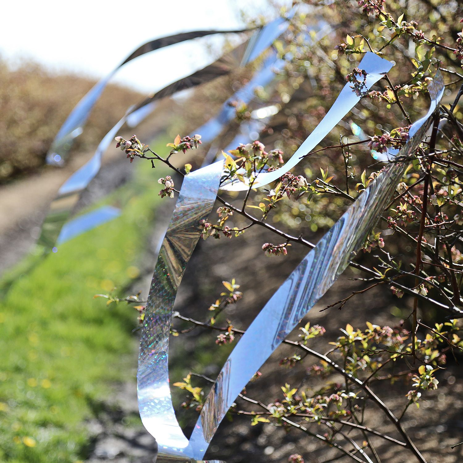 Bird Repellent Tape Creates A Visual Annoyance Zone To Keep Pest Birds Away From Gardens