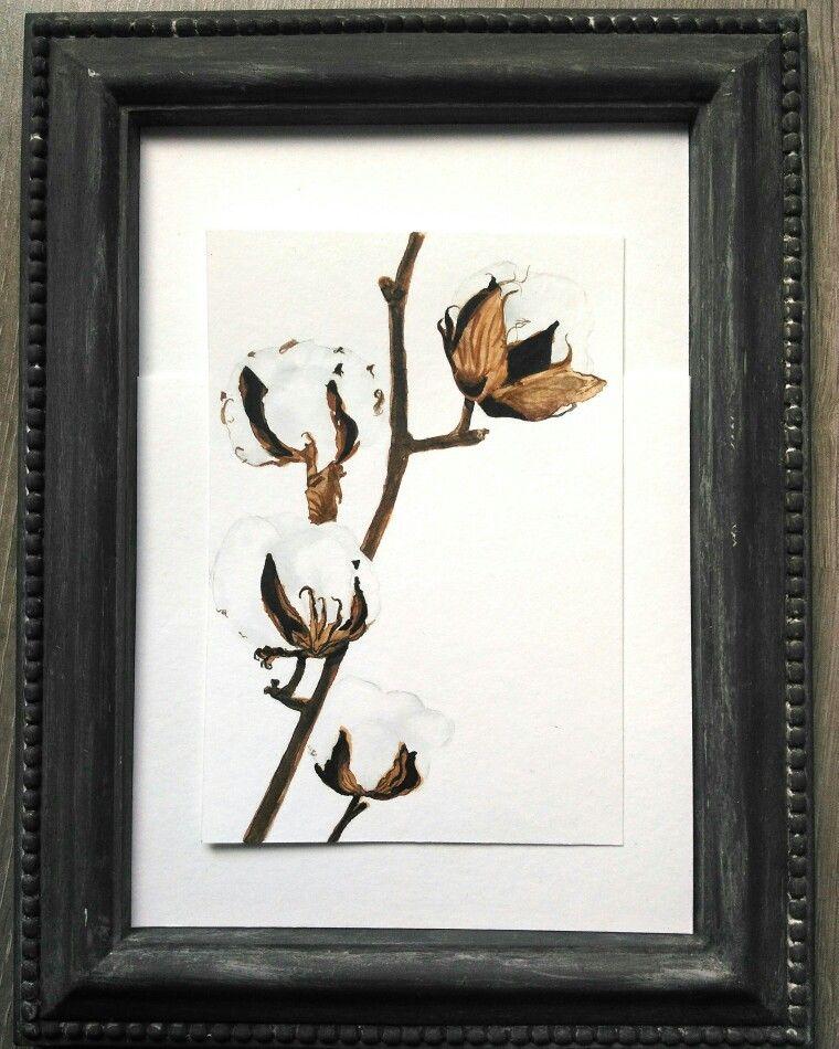 #cotton #watercolor #watercolorartist #botanical #nature #postcards #paintings
