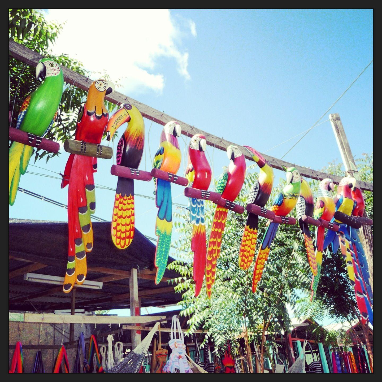 Caribean Inspired Colours Colombian Design Colombianhammocks  # Muebles Momposinos