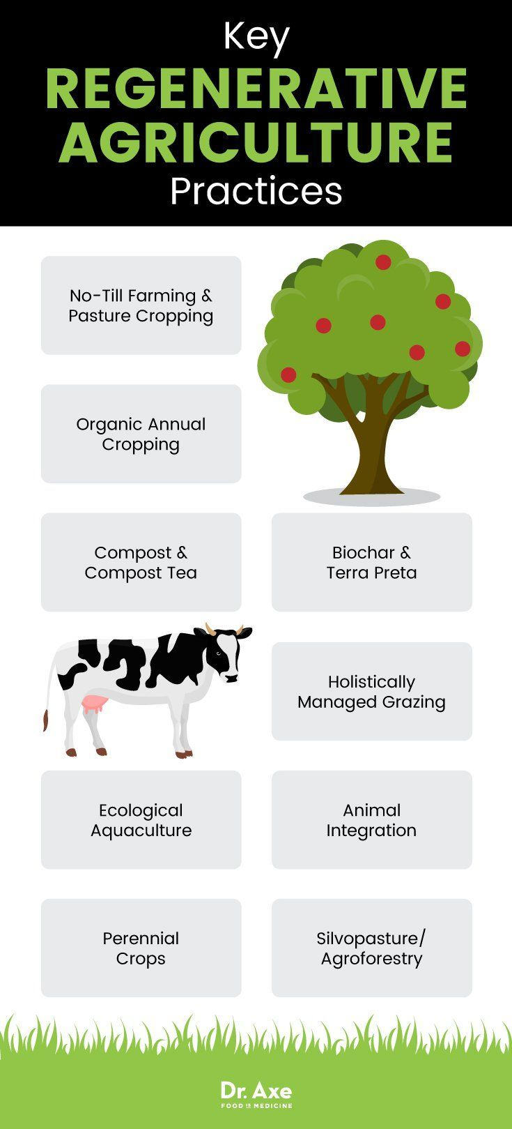 Regenerative Agriculture Principles + Why Different Than Organic - Dr. Axe