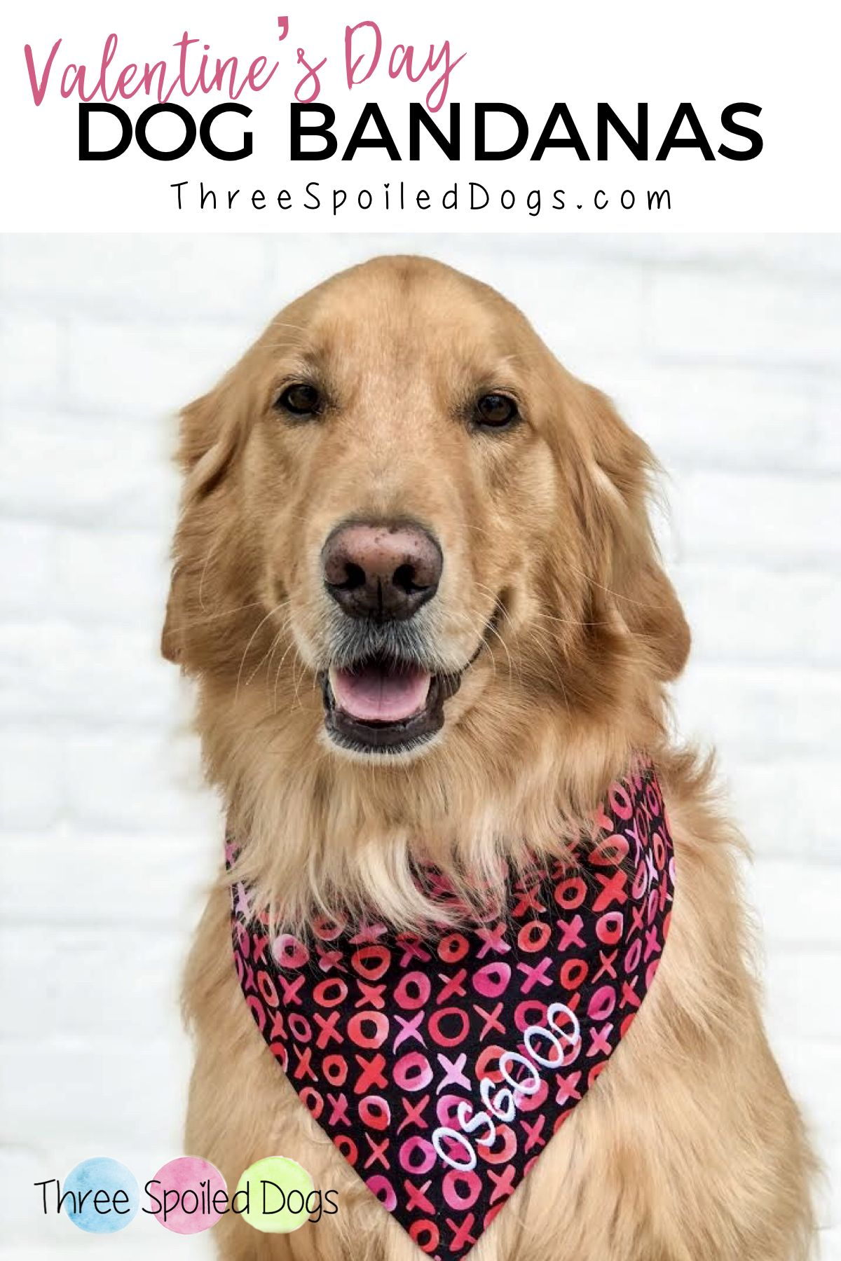 Personalized Pet Accessories Dog Bandanas Dog Beds Best Custom Puppy Dog Gifts By Three Spoiled Dogs
