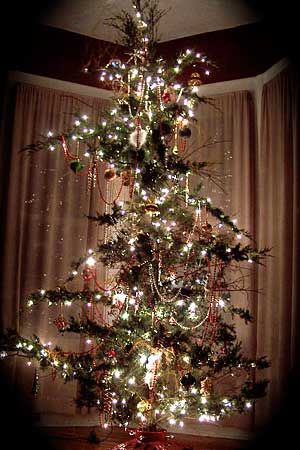 Gaudy Christmas Decorations