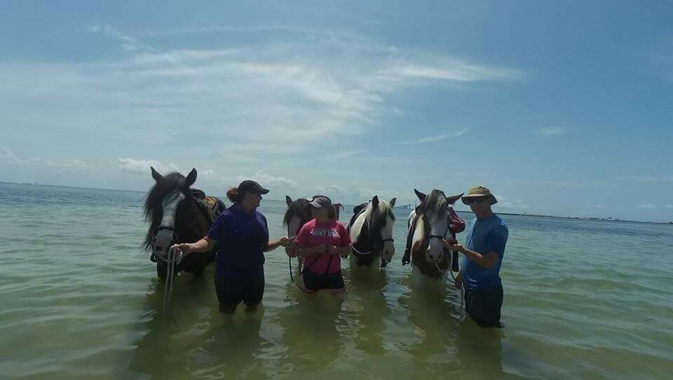 Ride Horses On Beach Florida