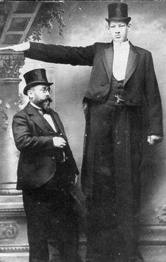 """Julius Koch 8'1"""""""