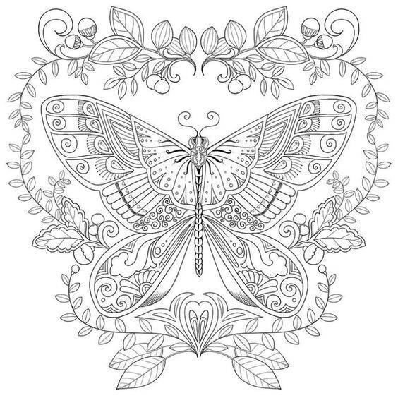 Nice Butterfly coloring outline | Butterfly Coloring Pages ...
