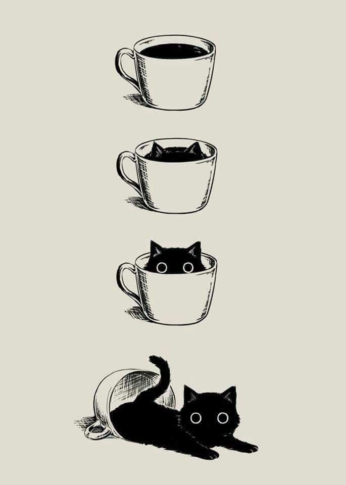 Kitty Cup Coffee Cat Art Cat Drawing Cute Drawings